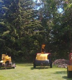 BEST PRICE TREE SERVICE – Ponoka AB …403-396-7623