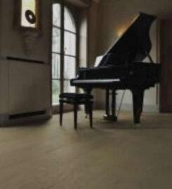 CARPET WORLD – 306-764-4474 …Prince Albert SK – sales, service, carpets, vinyl, plank, laminate, area rugs, installation, hardwood, fiber flooring, mats, custom binding