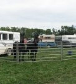LONE STAR RANCH SALES – Red Deer AB …403-356-9319