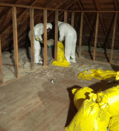 STOSE BUSTERS (ASBESTOS/Mold Removal) …Red Deer AB – 587-227-9947